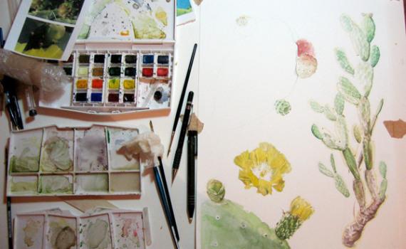 catarina paints